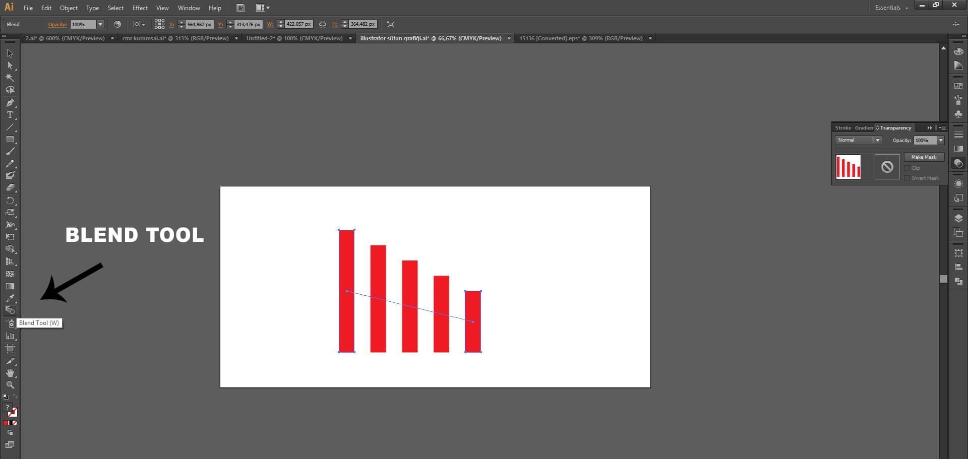 Illustrator'da Sütun Grafiği Nasıl Yapılır ?