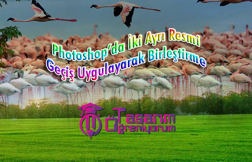 Photoshop'da İki Ayrı Resmi Geçiş Uygulayarak Birleştirme