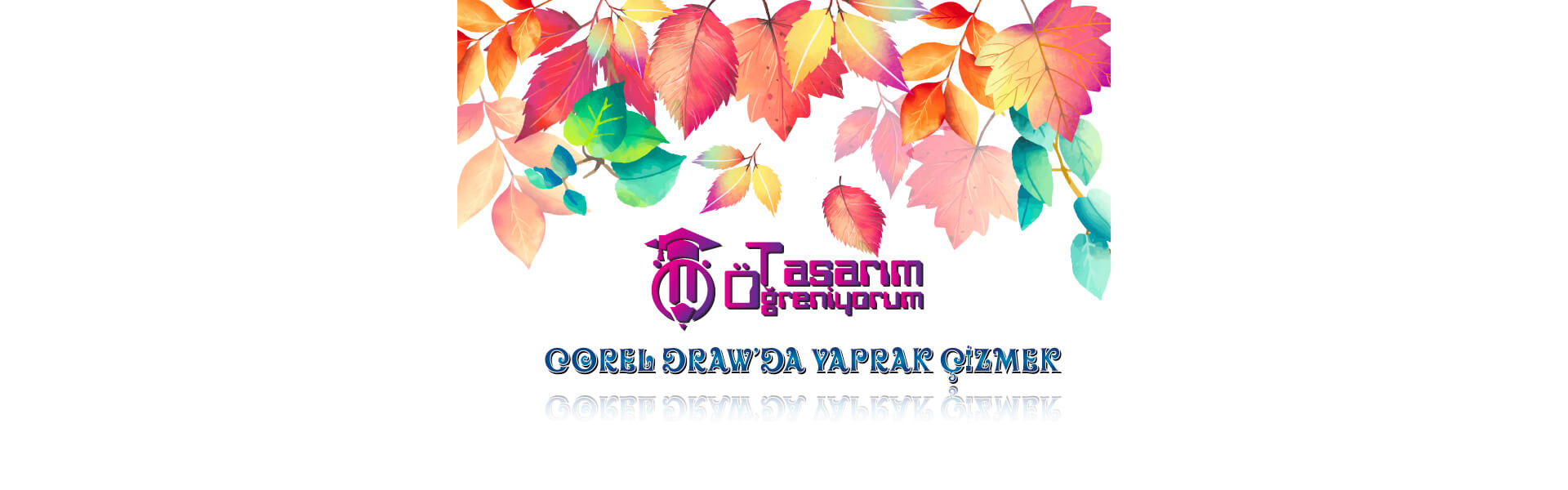 Photo of Corel Draw'da Yaprak Çizelim.